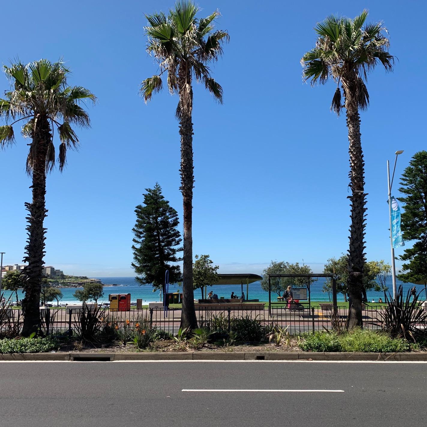 オーストラリア Sydney シドニー ボンダイビーチ BONDI BEACH BONDI ボンダイ